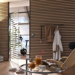 dorma-manet-staande-uitvoering-glazen-deur