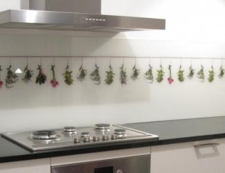 foto op glas kruiden keuken achterwand edelglas