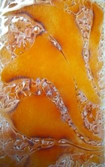 Mf-08 orange flora